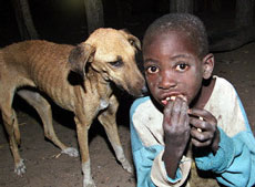 A Zimbabwean boy from the famine-stricken Binga district, 600 kilometrs west of Harare, and his dog eat donated bread, Oct. 13, 2002 (Photo: AFP)